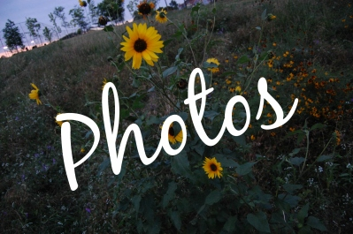 Photos Nail