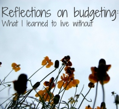 Reflections on budgeting