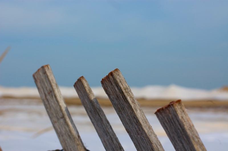 Evanston beach 2